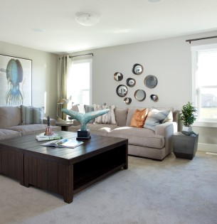 Olympus Showhome